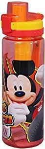 Disney Mic...