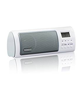 Circle Beaut Portable Fm Radio With Alarm Clock Speaker / Fm Auto Scan & Save Radio Channels / Record Function / Alarm Clock & Time Shoutdown- Amazon