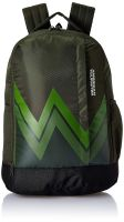 American Tourister 28 Ltrs Olive Casual Backpack (AMT Twist Backpack 02 - Olive)- Amazon