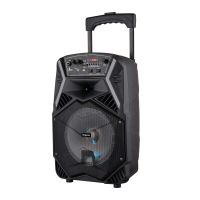 Impex TS-25B 25 W Multimedia Portable Trolley Speaker with Mic & LED Light- Amazon